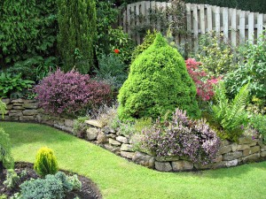 Professional gardening in London